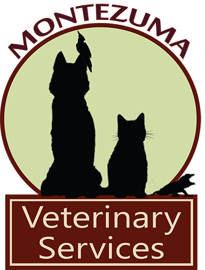 Welcome to Montezuma Veterinary Services!